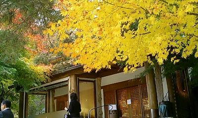 一竹美術館の紅葉