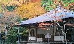 高山寺の紅葉1