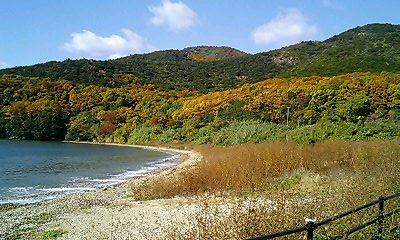 海沿いの紅葉