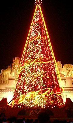 巨大クリスマスツリー1