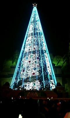 巨大クリスマスツリー4
