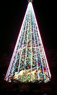 巨大クリスマスツリー5