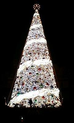 巨大クリスマスツリー6